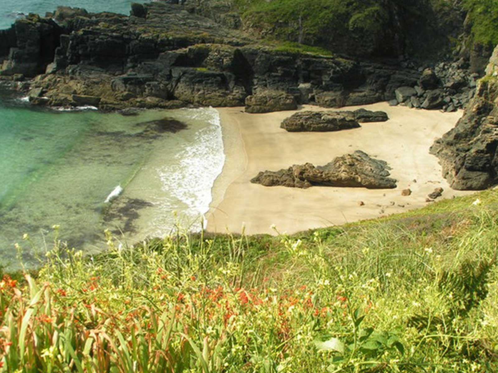 Housel Bay, Cornwall by Brian Whittle